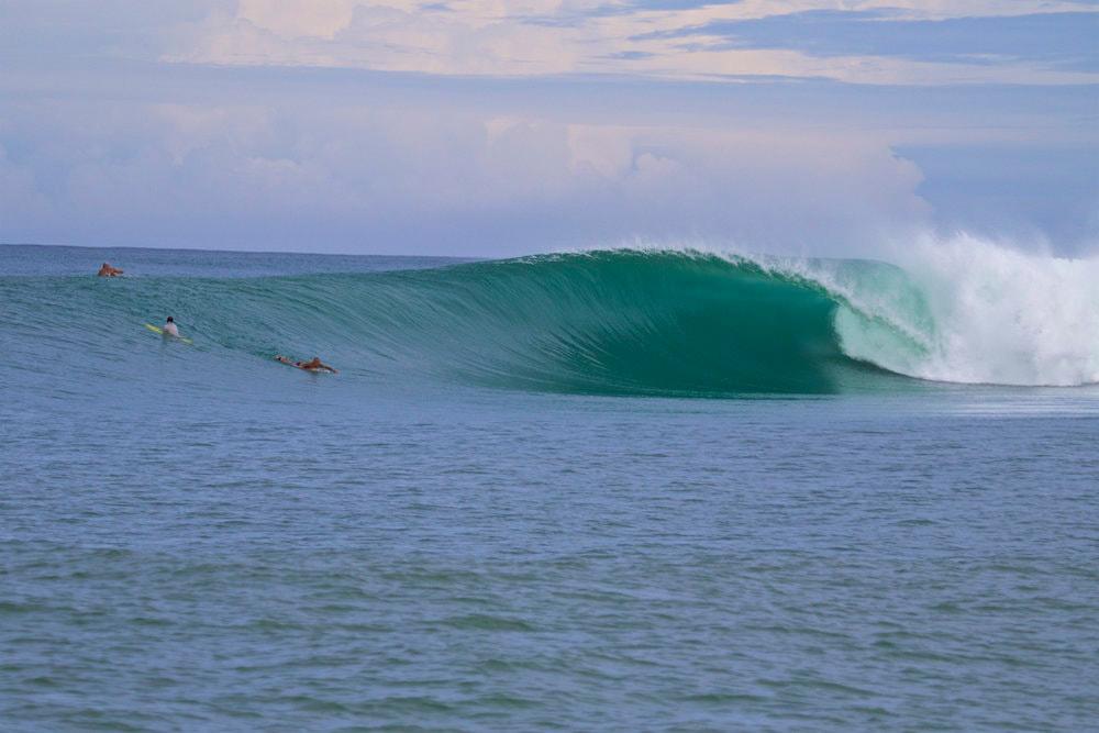 Salonako Wave